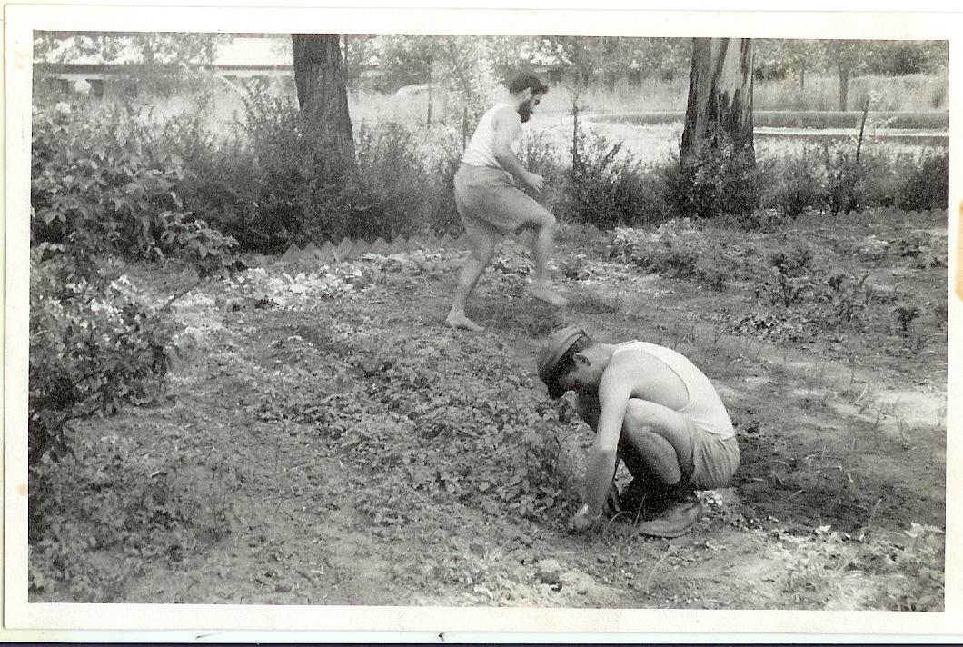 Grasmere Hachsharah with Meier Tamari 1955