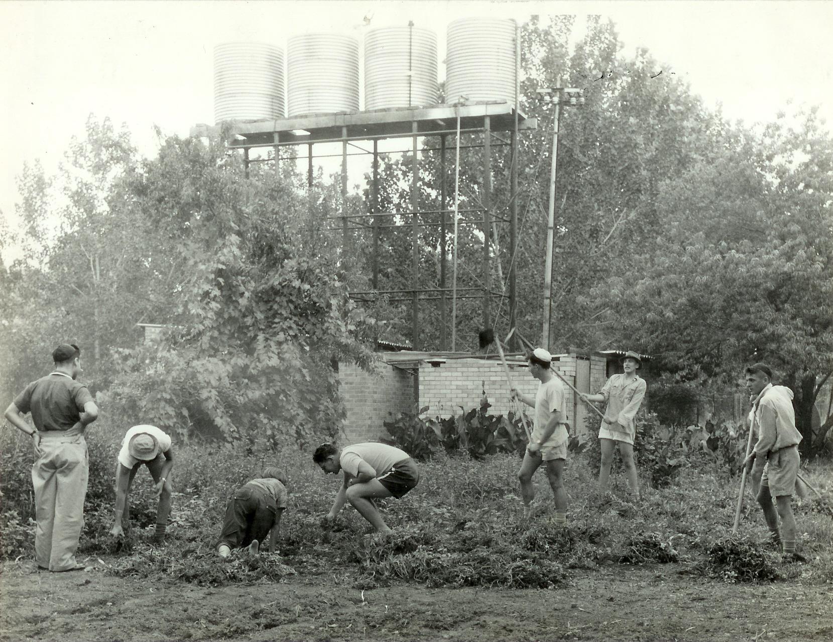 Grasmere Seminar  1955