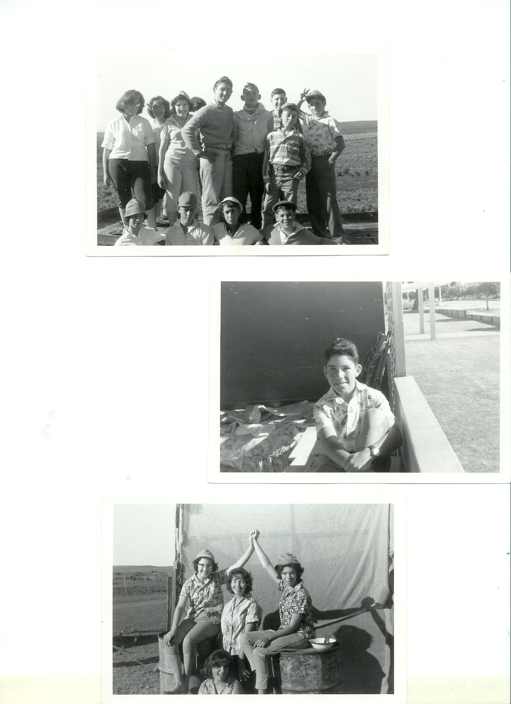 PE 1961 Pineapple Farm Machaneh Avodah